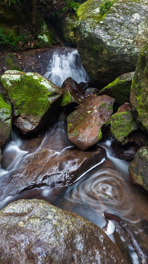Elabana Falls Snippet