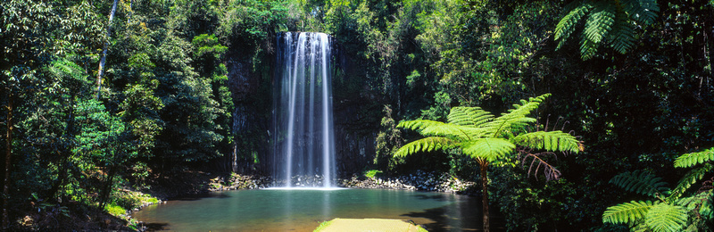 Millaa Millaa Falls on film