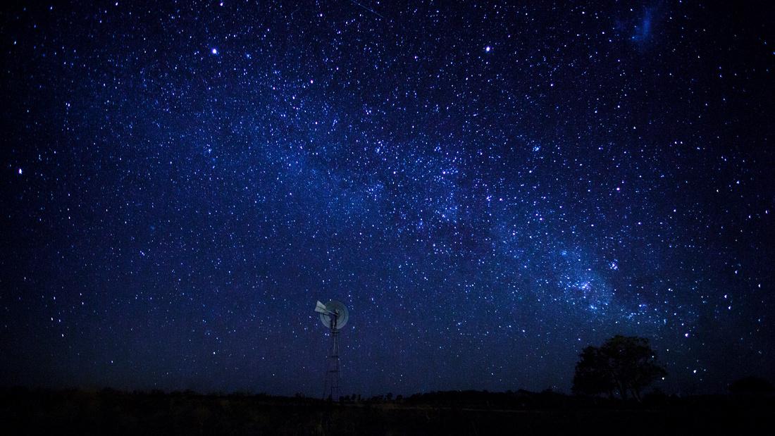 Freestone Stars